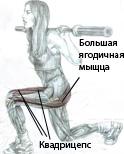 Упражнения для бедер и ягодиц в